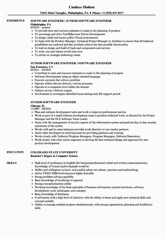 junior software developer resume