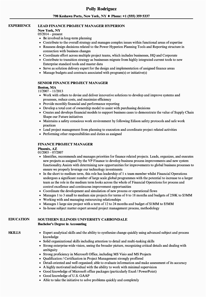finance project manager resume sample