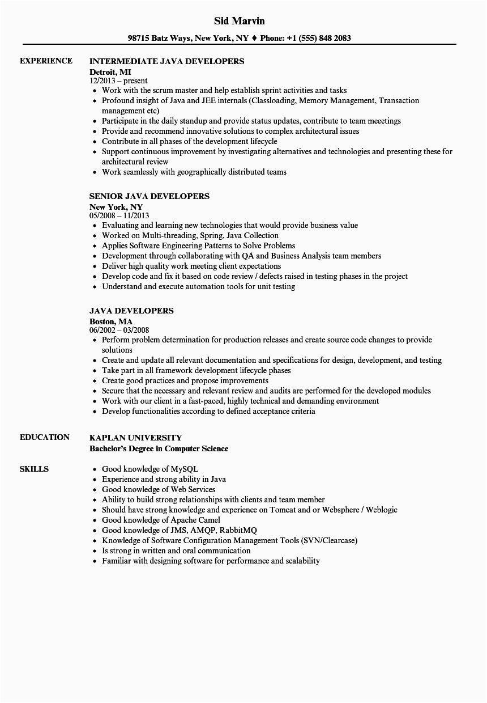 ui developer sample resume 2 years