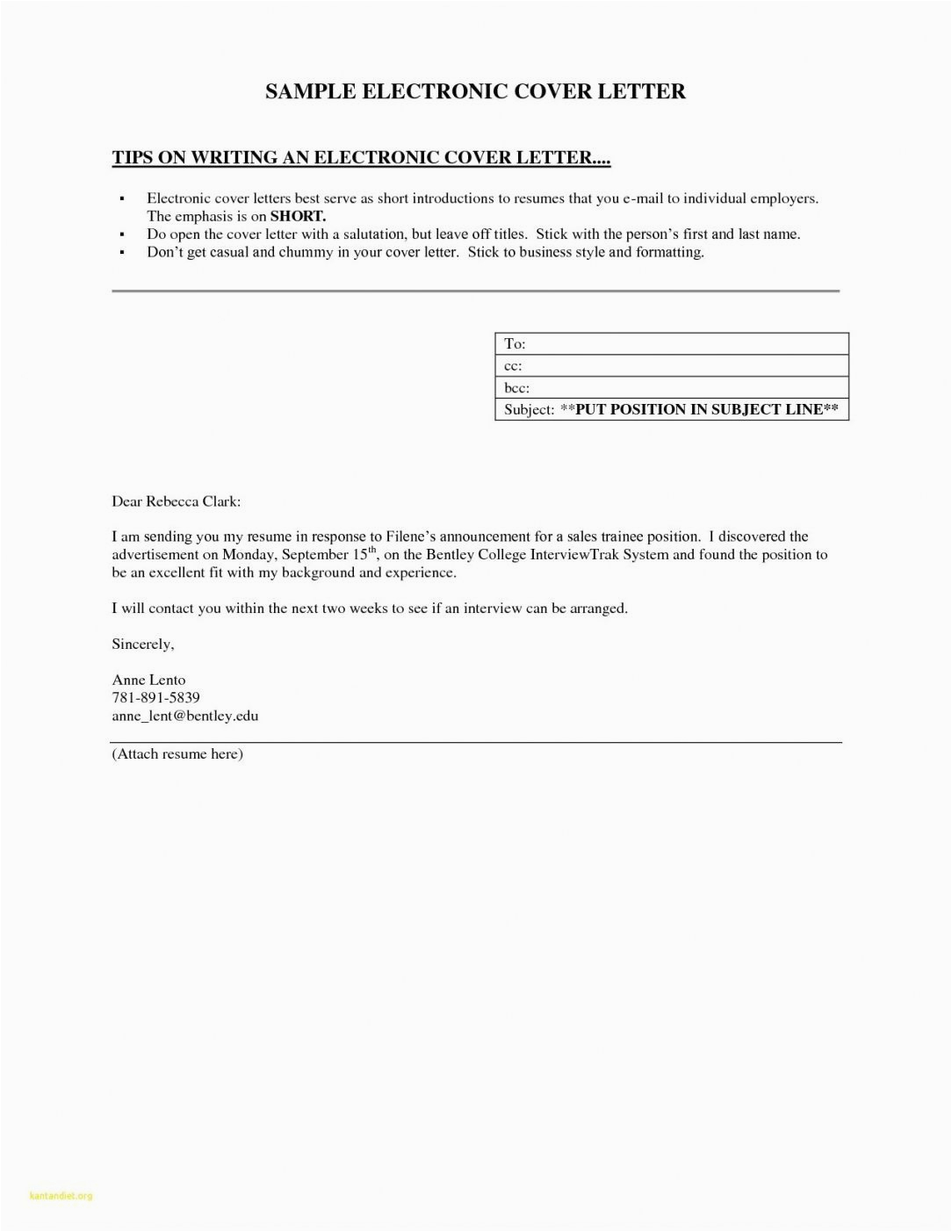 resume sample email for job application