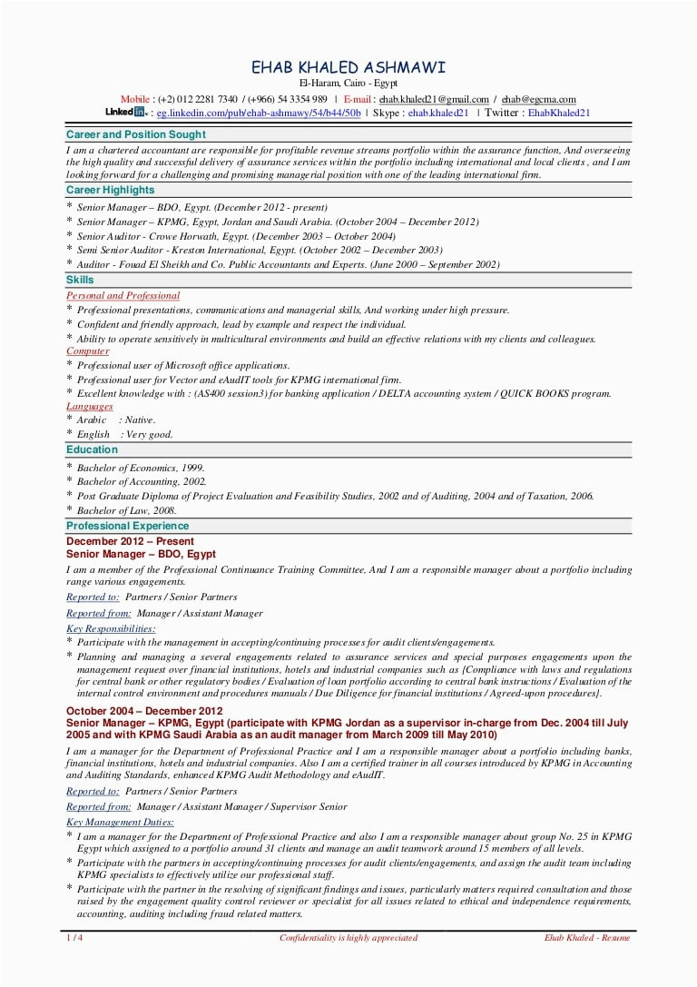 accountant resume sample pdf in india