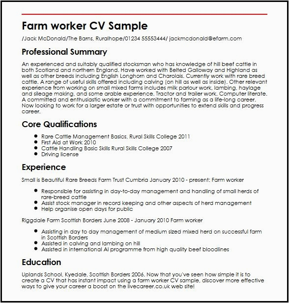 3 images curriculum vitae sample for