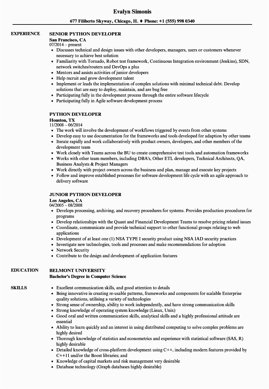 awesome resume template for python developer