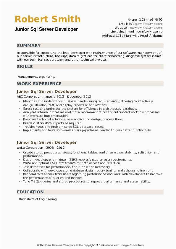 junior sql server developer