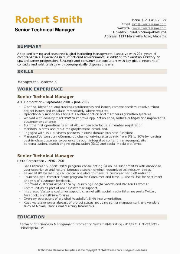 senior technical manager