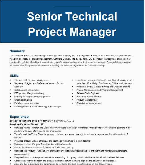 senior technical project manager ba1e84e a5d
