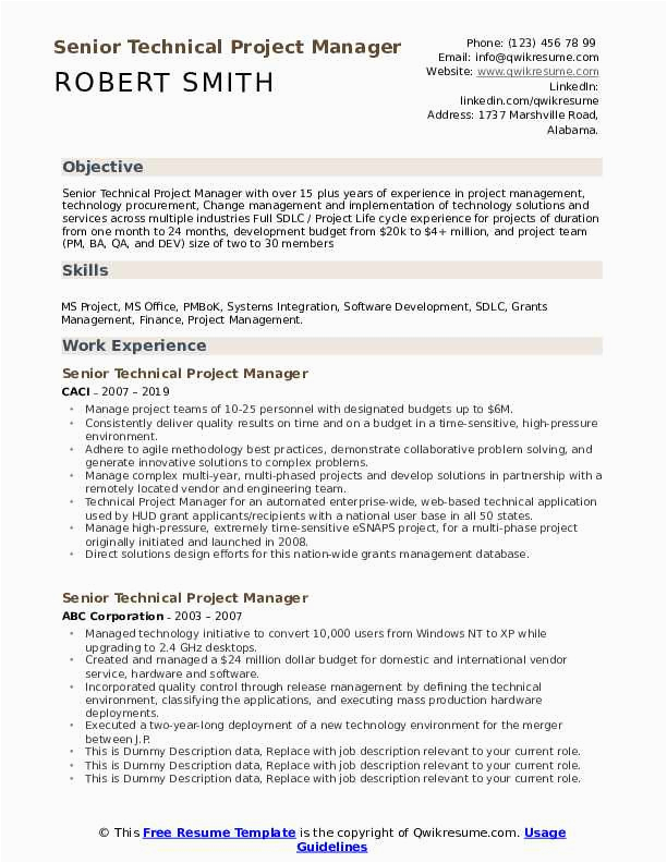 senior technical project manager