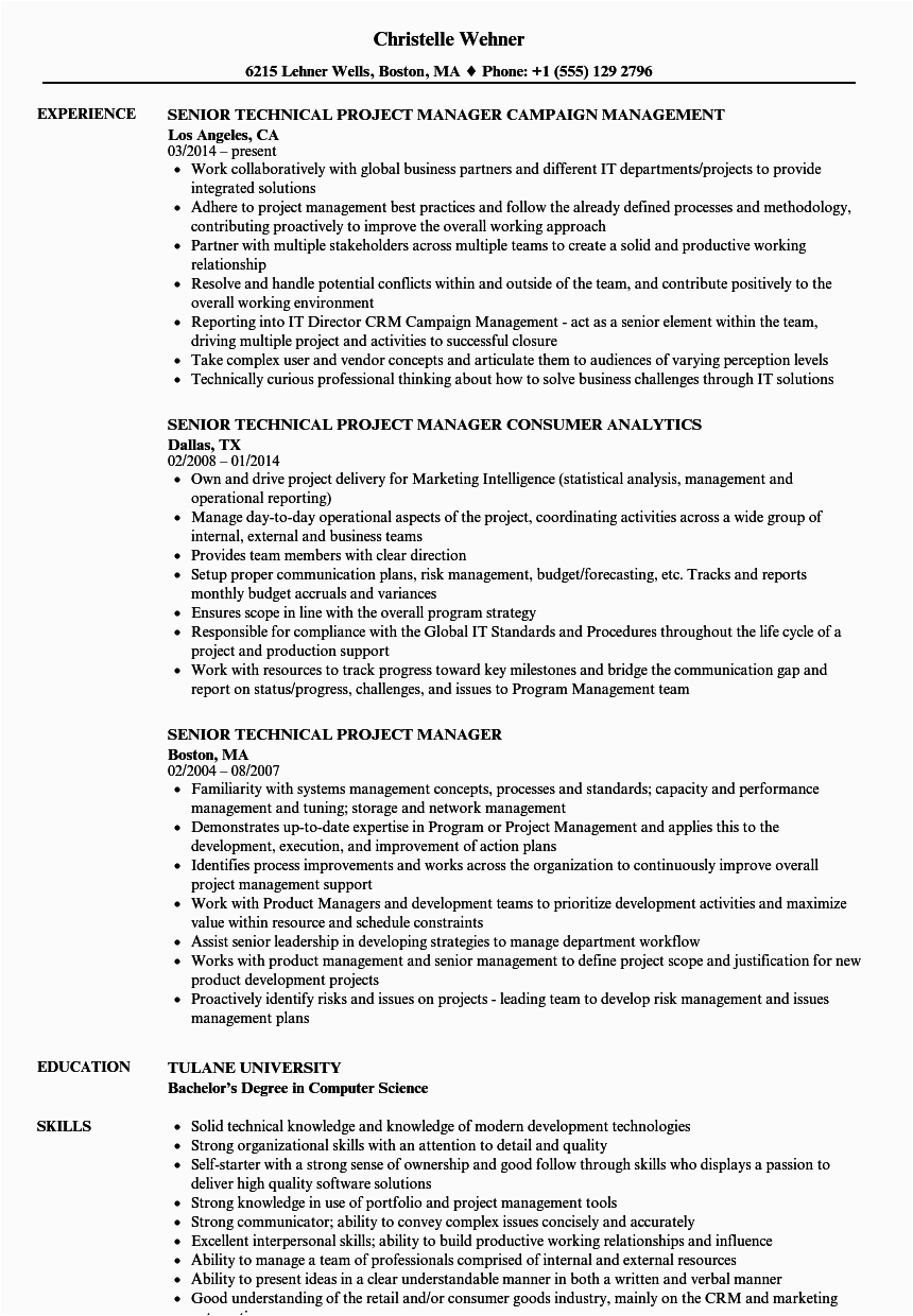 senior technical project manager resume sample
