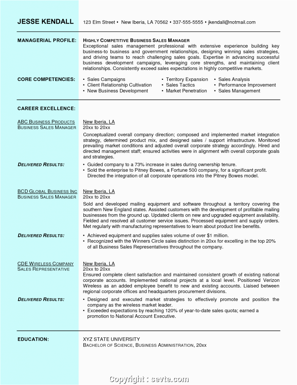 free resume format for sales and marketing manager