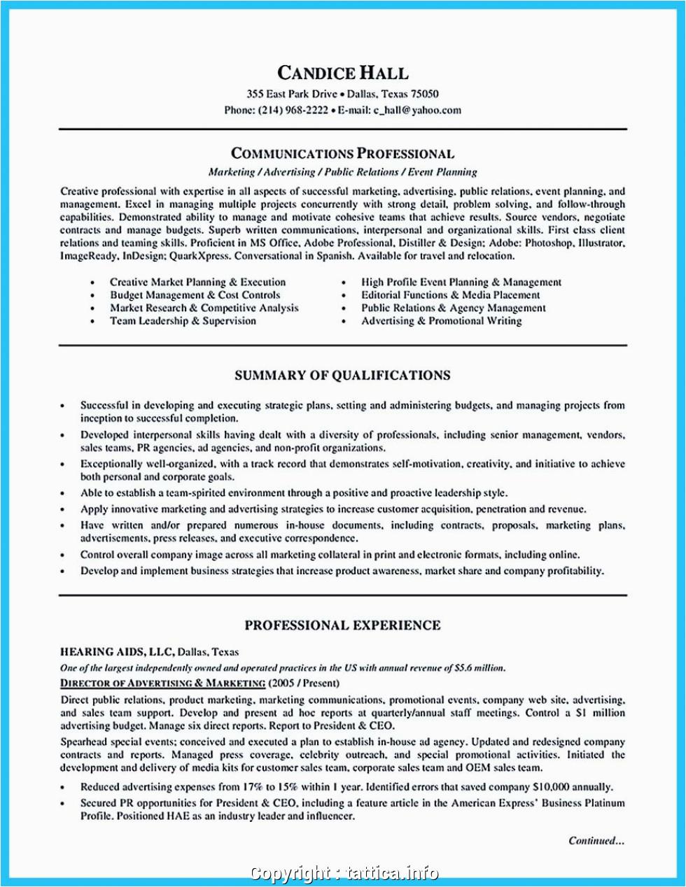 best it director professional resume