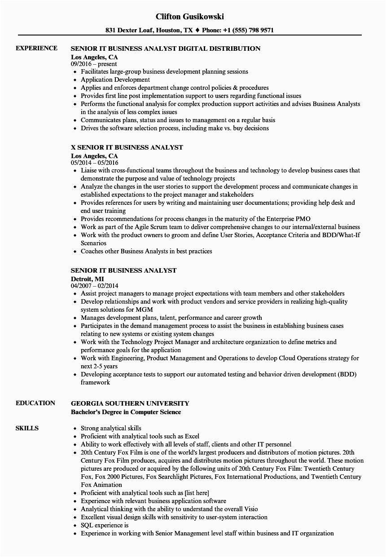 Best Senior Business Analyst Resume Sample Senior Business Analyst Resume Examples Best Resume Examples