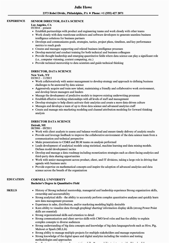 director data science resume sample