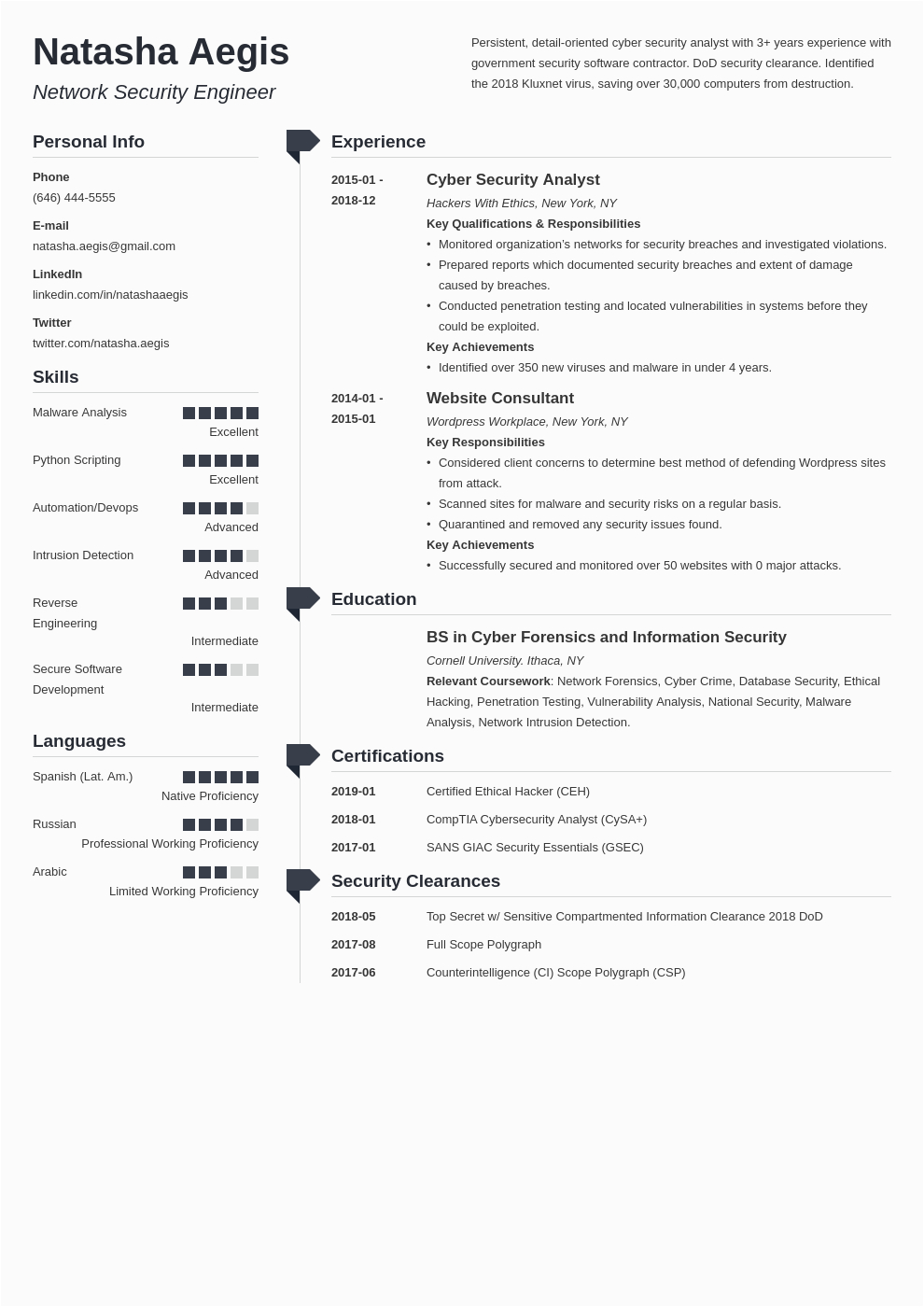 cyber security resume example