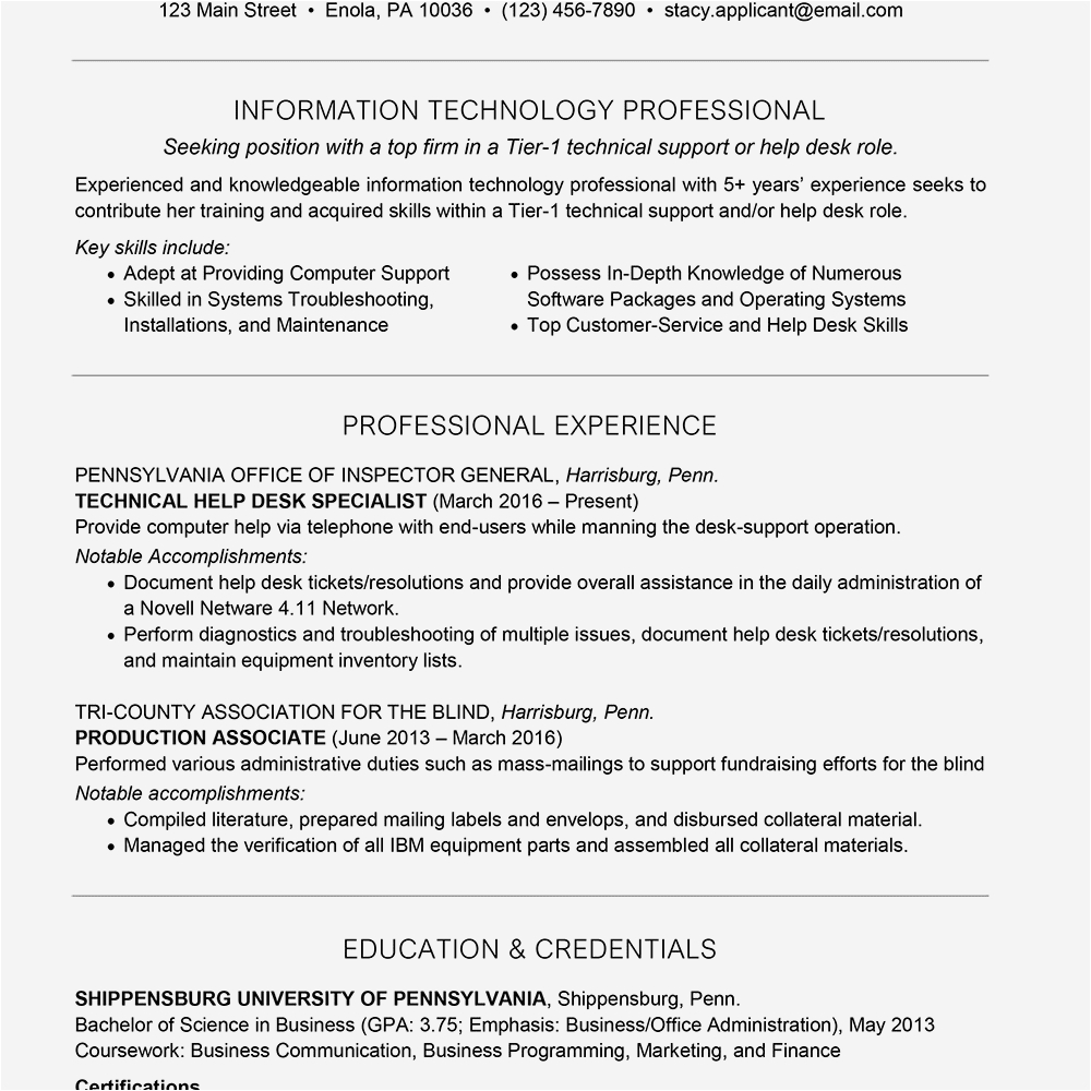 it technician resume with summary statement example