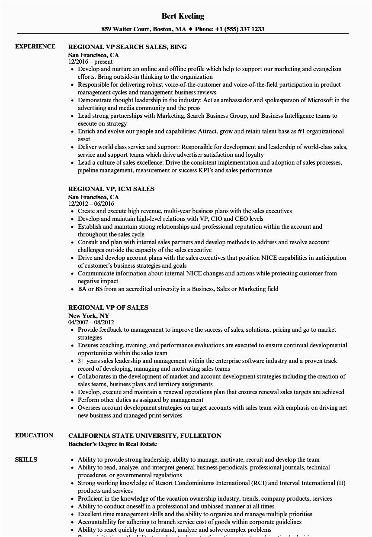 regional sales vp resume sample