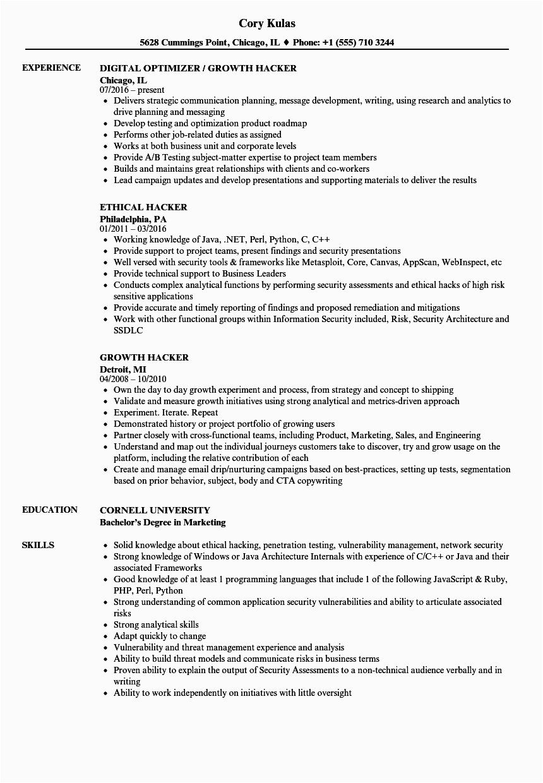 Sample Resume for Ethical Hacker Fresher Hacker Resume Samples