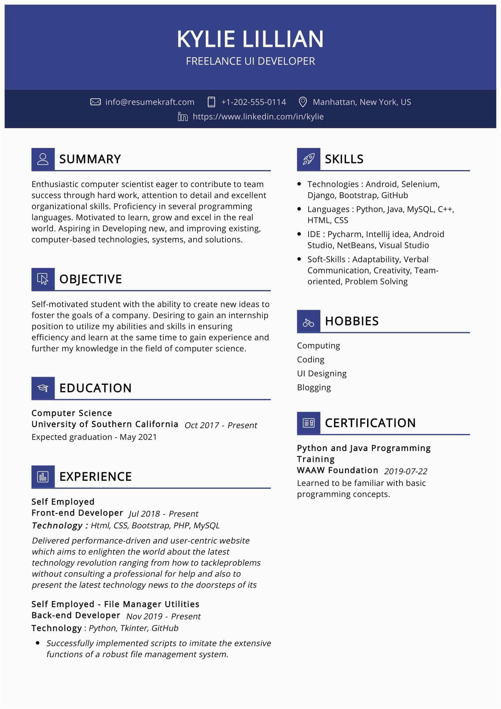 freelance ui developer resume