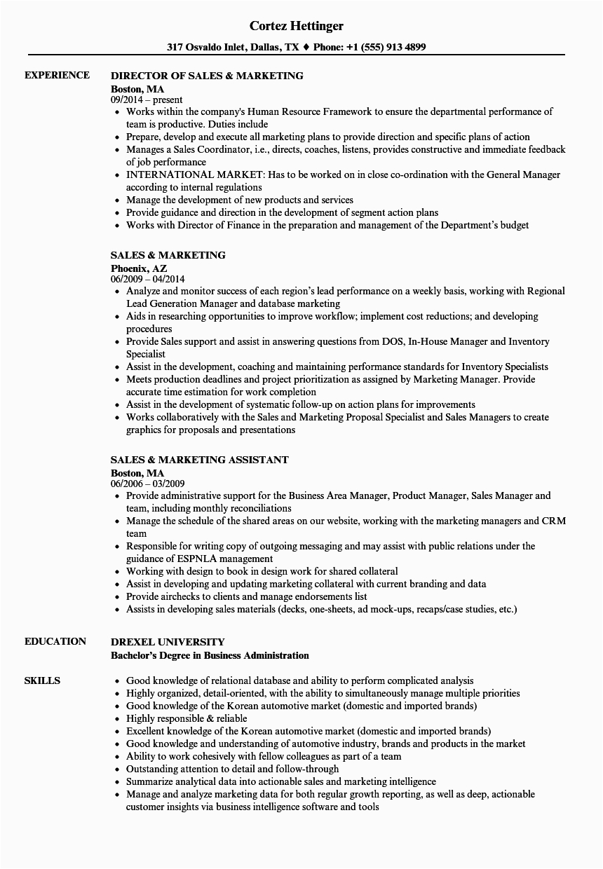 Sample Resume for Sales and Marketing Job Resume Examples for Marketing and Sales top Marketing