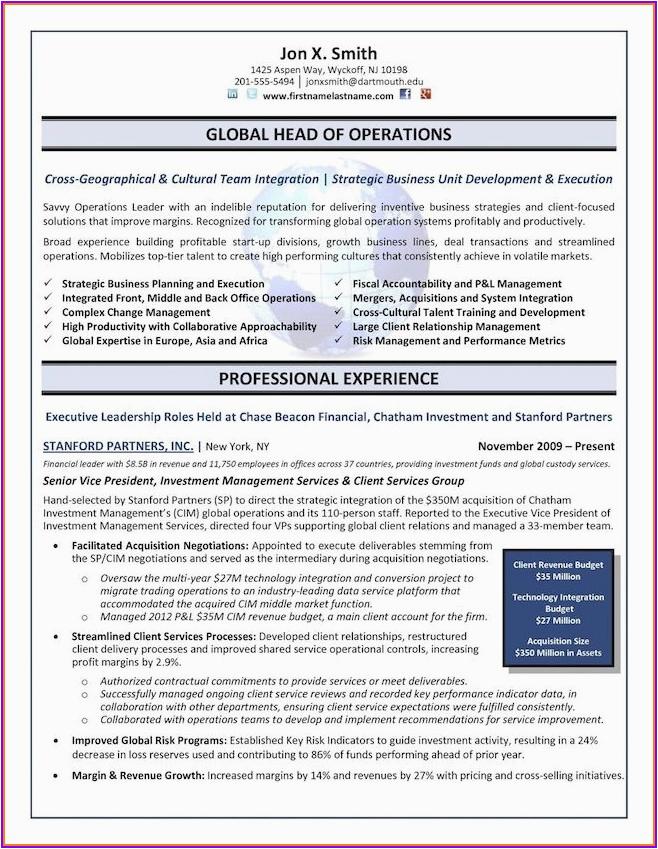 senior executive senior management position executive resume samples