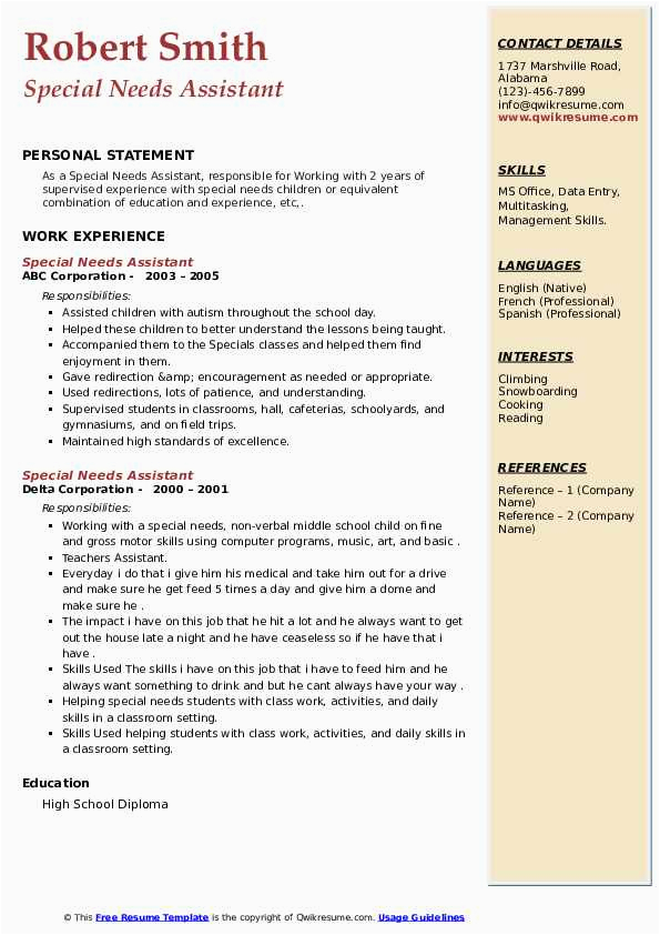 special needs assistant