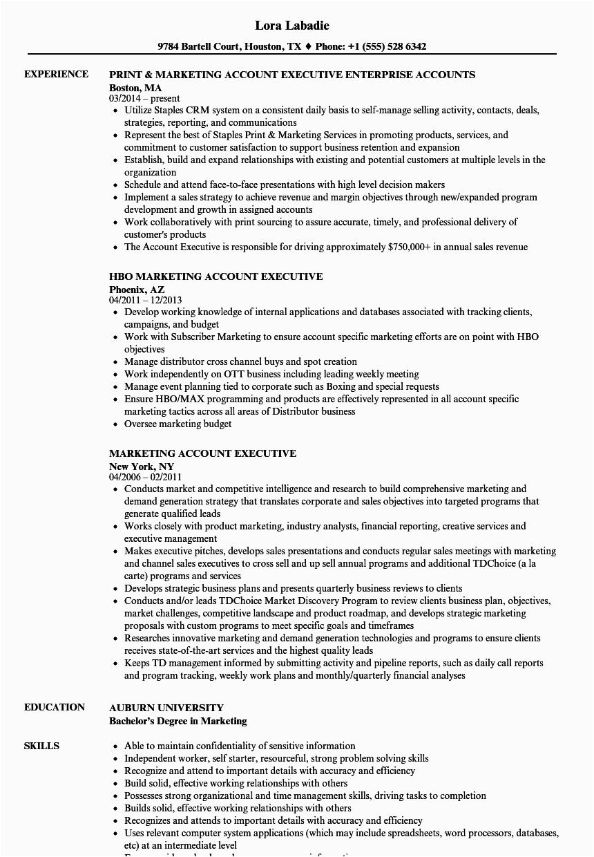 accounts executive resume sample