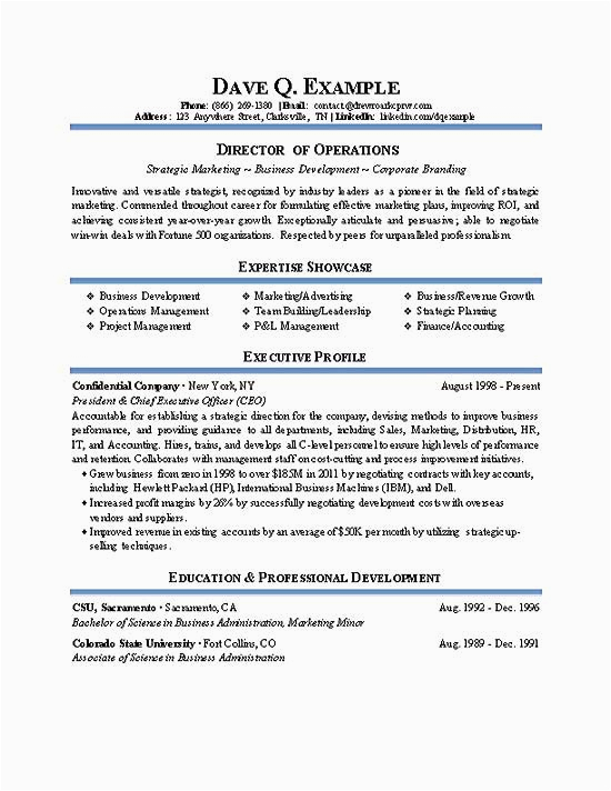 operations director resume example