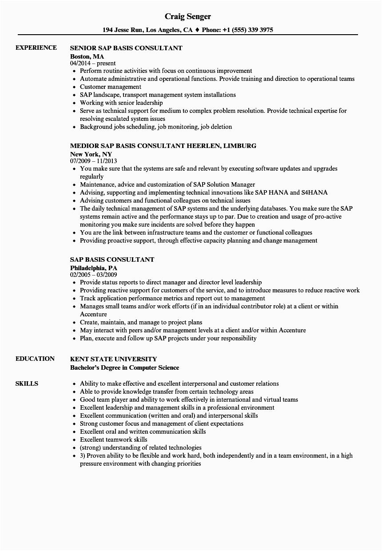 sap basis consultant resume sample