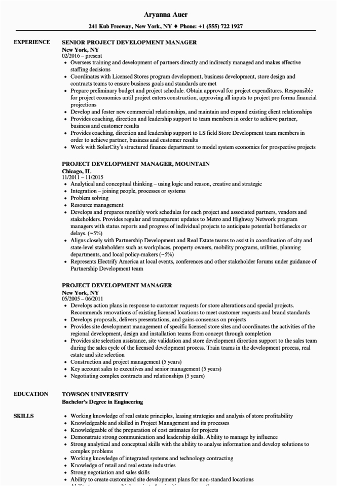 software development project manager resume