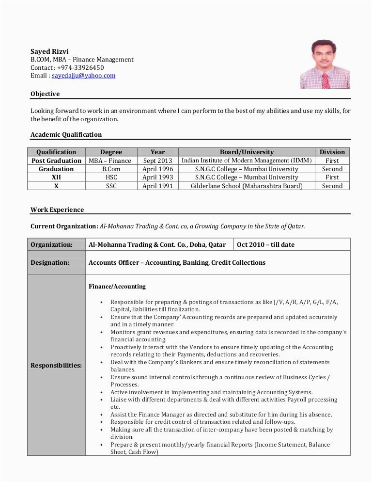 accountant resume sample india