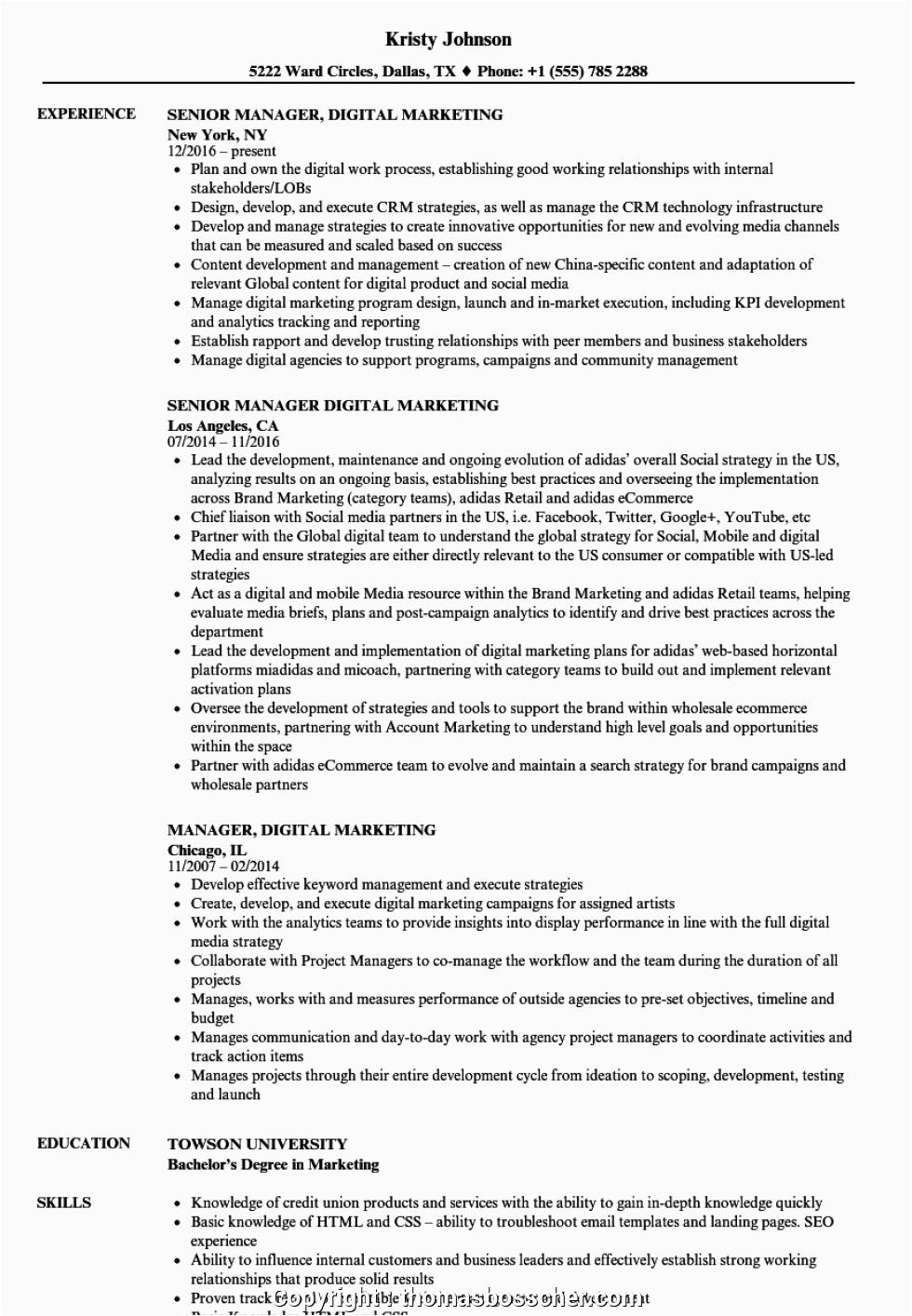simply digital marketing resume for fresher