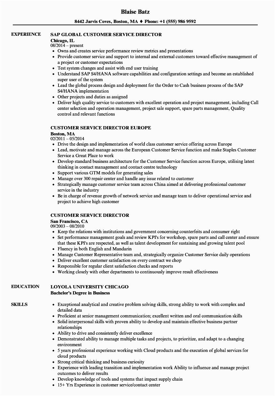 customer service director resume sample