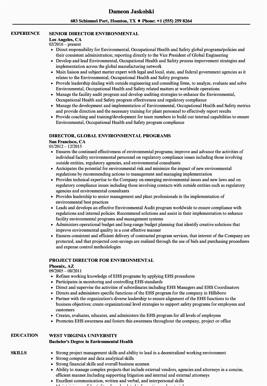 environmental director resume sample