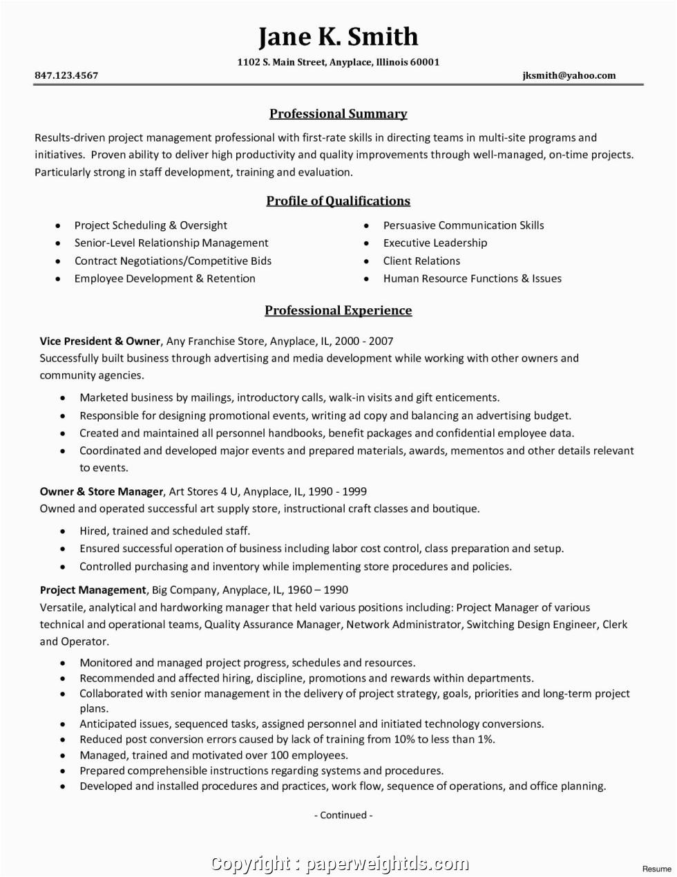 modern entry level program manager resume