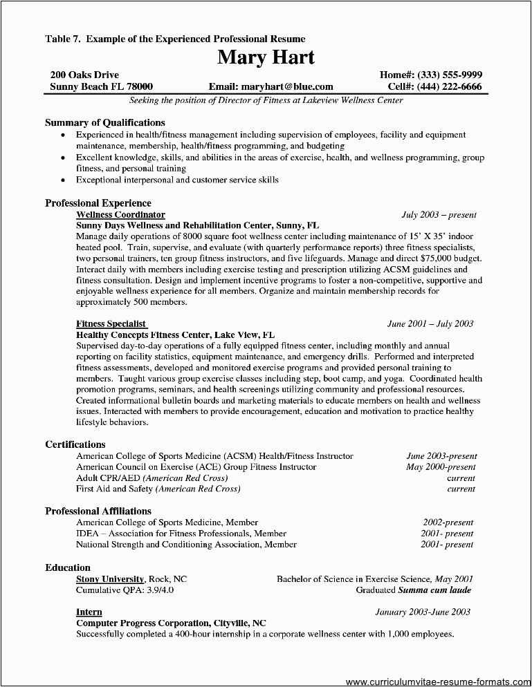 resume for it professional with experience