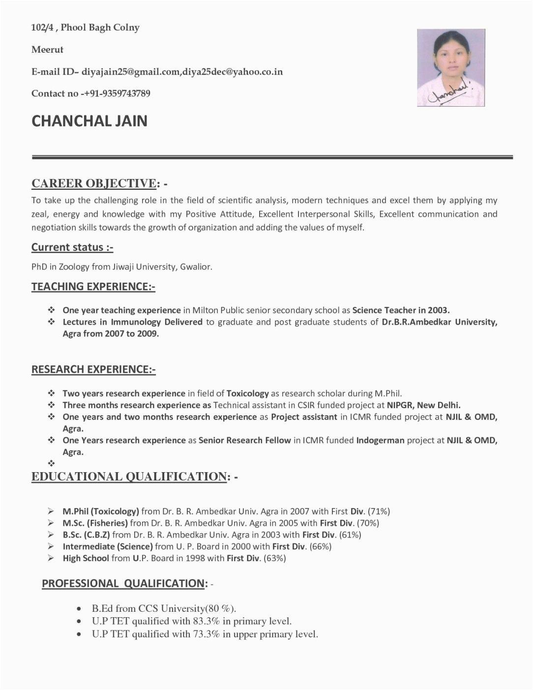 resume for fresher teacher job application