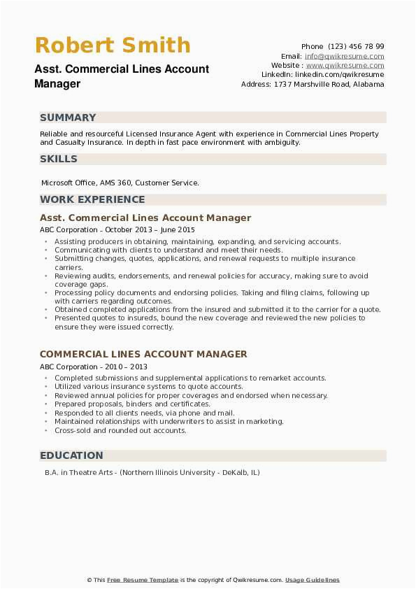 mercial lines account manager