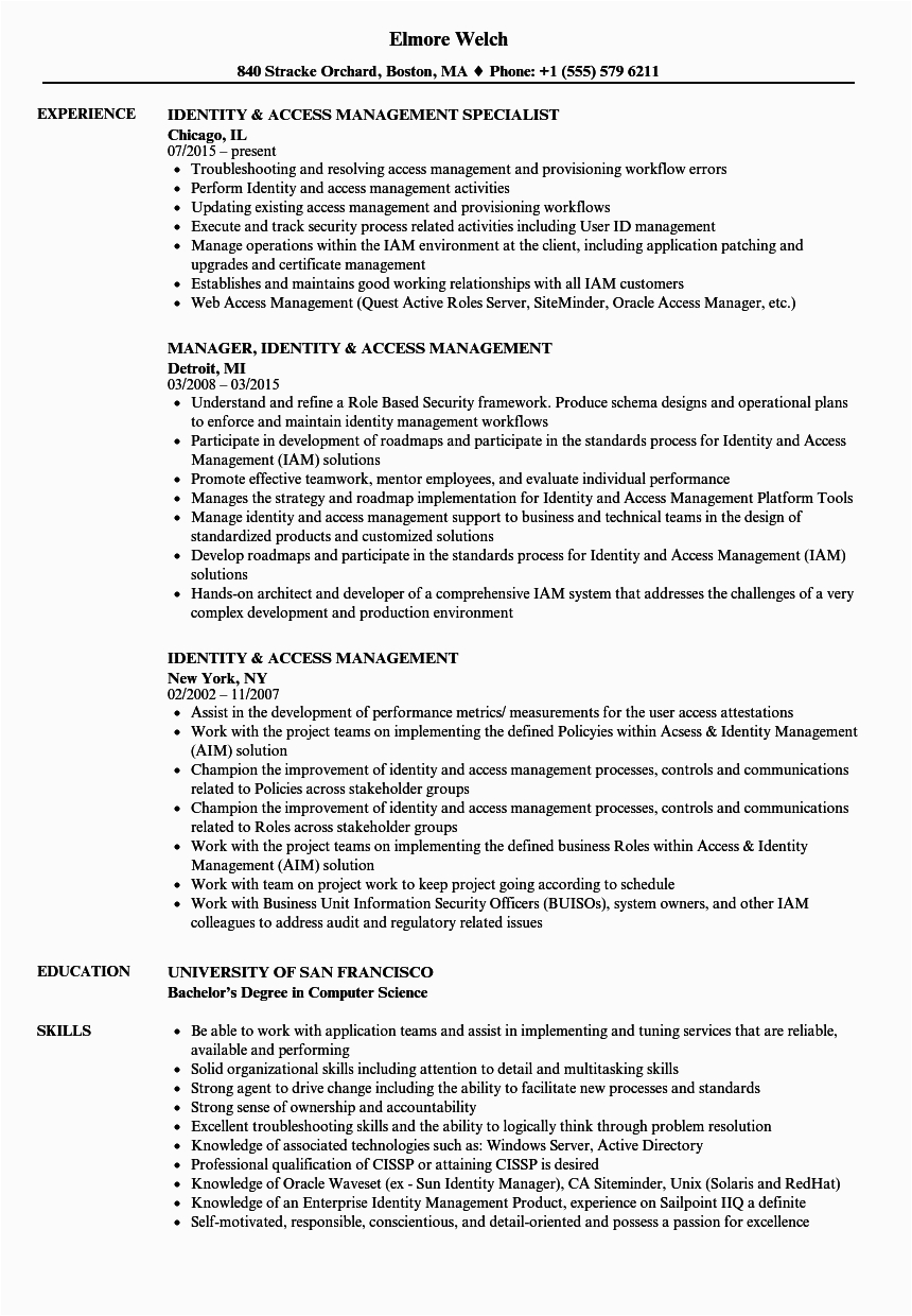 Sample Resume for Identity and Access Management Identity & Access Management Resume Samples