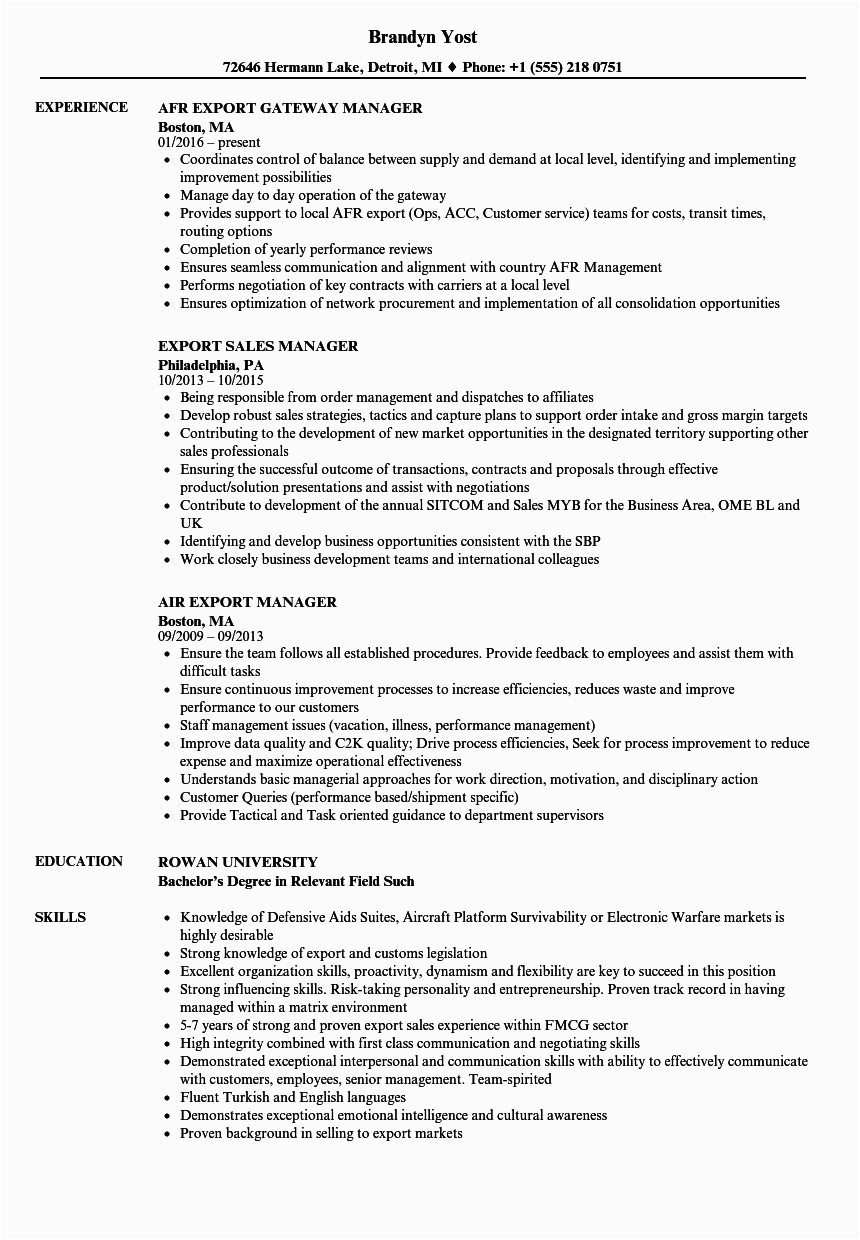 collection of export sales manager cv sample
