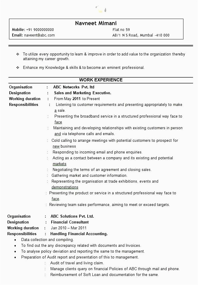 sample sales executive resume example template