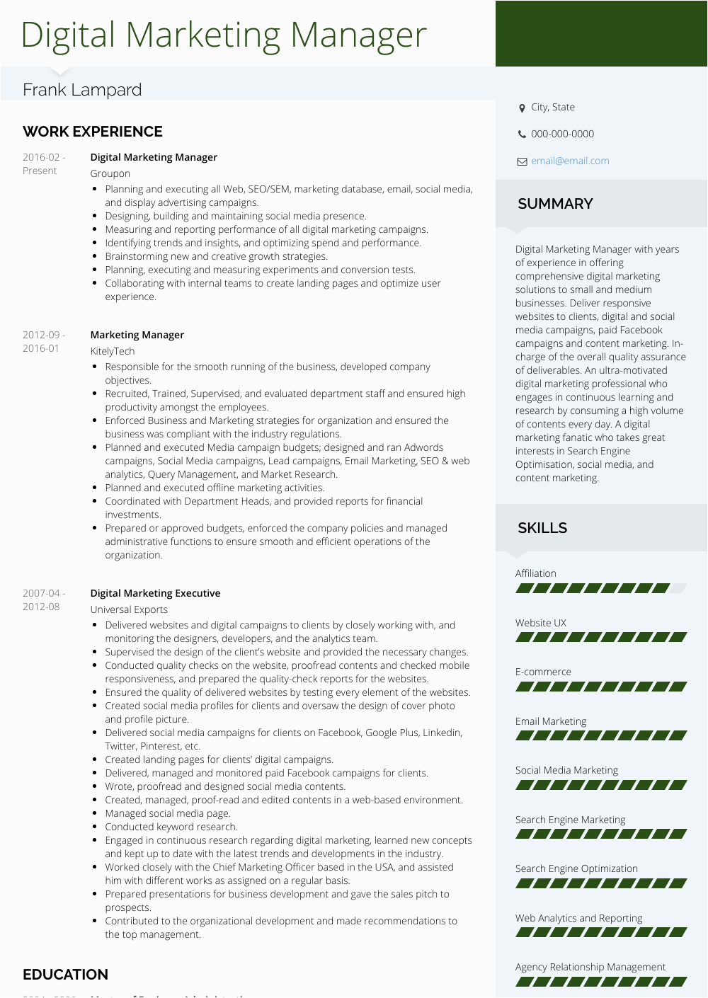 Sample Resume Of Digital Marketing Manager Digital Marketing Manager Resume Samples and Templates