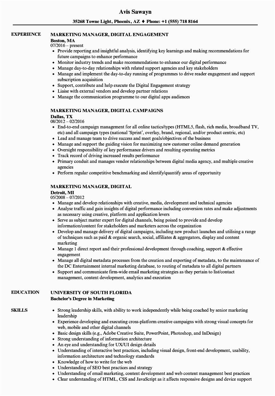 marketing manager digital resume sample