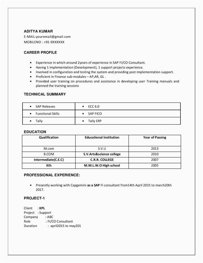 sap pp resume for 2 years experience