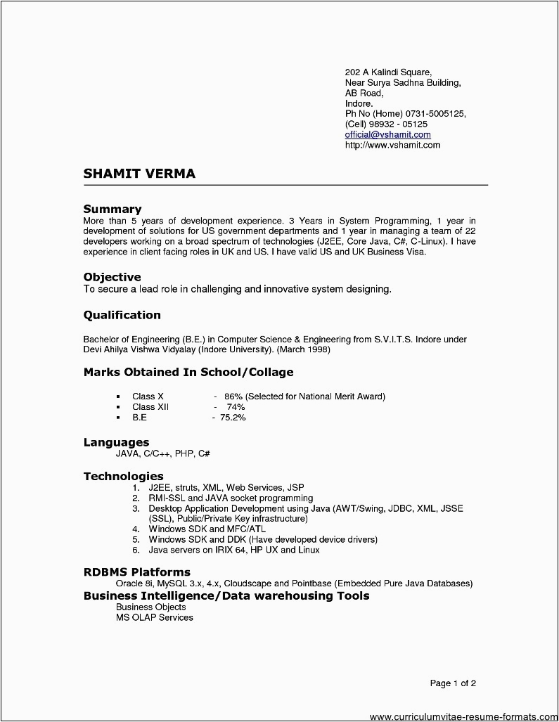 resume format for experienced it professionals doc