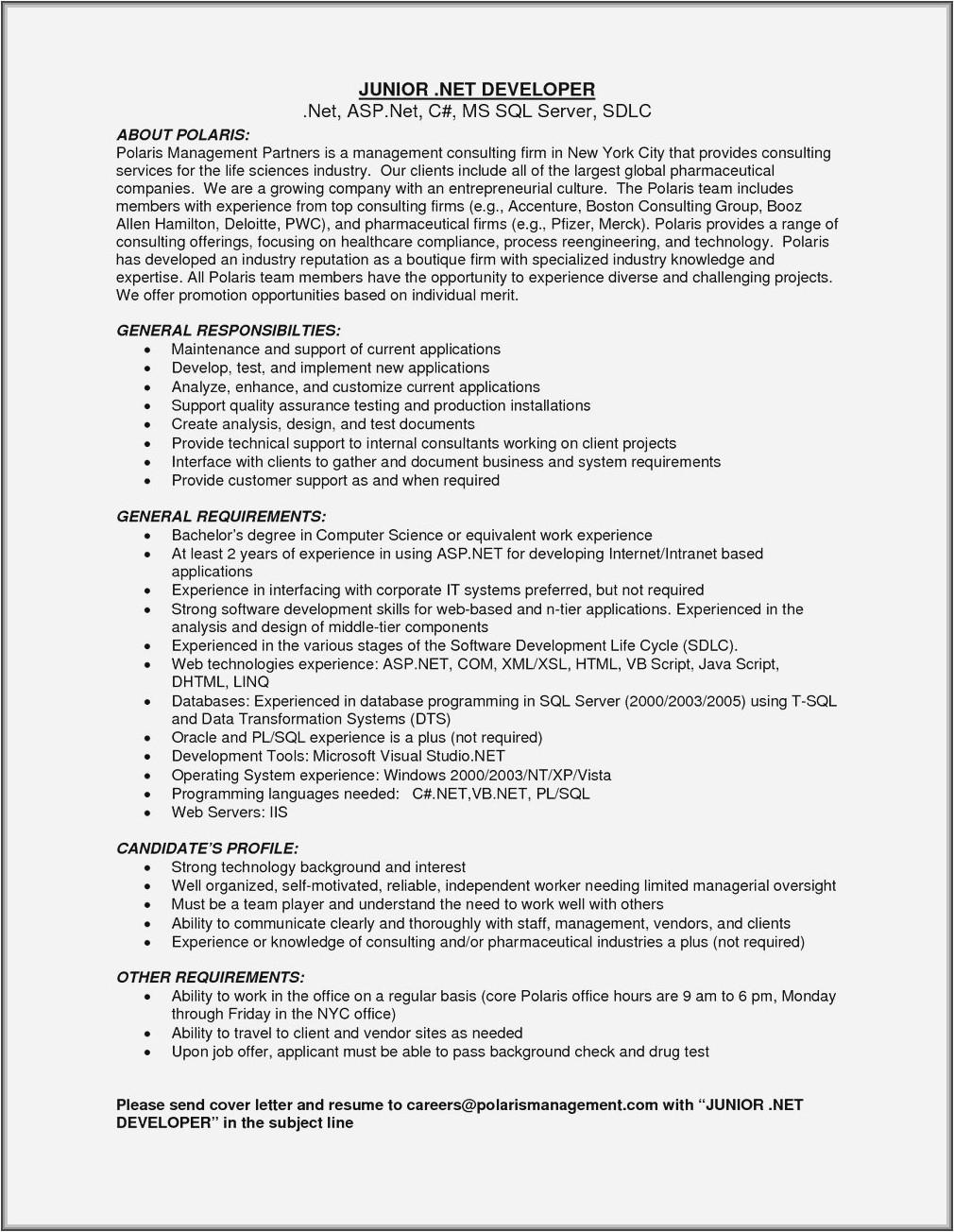 ruby on rails developer resume sample