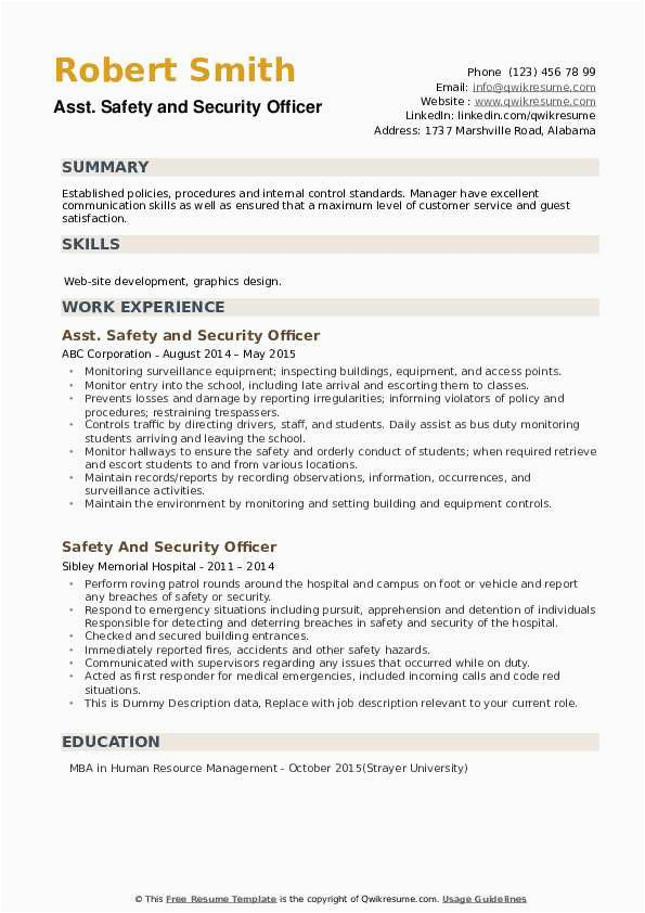 safety and security officer