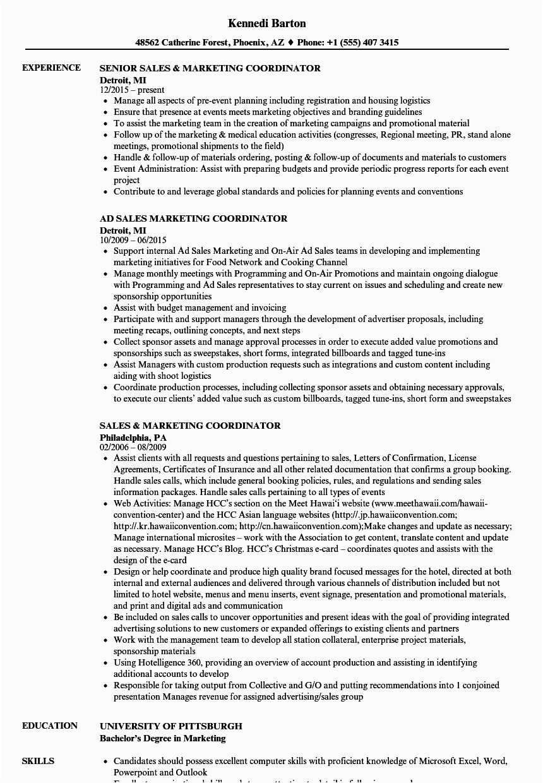 Sales and Marketing Coordinator Resume Sample Sales Marketing Coordinator Resume Samples
