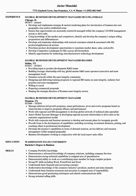 global business development manager resume sample