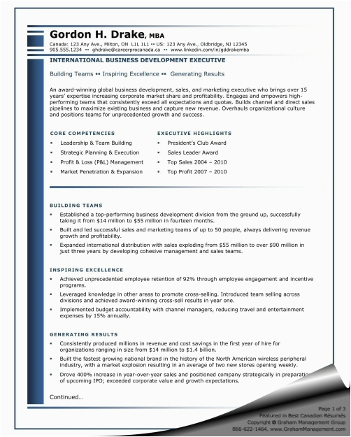 sample resume international business development executive