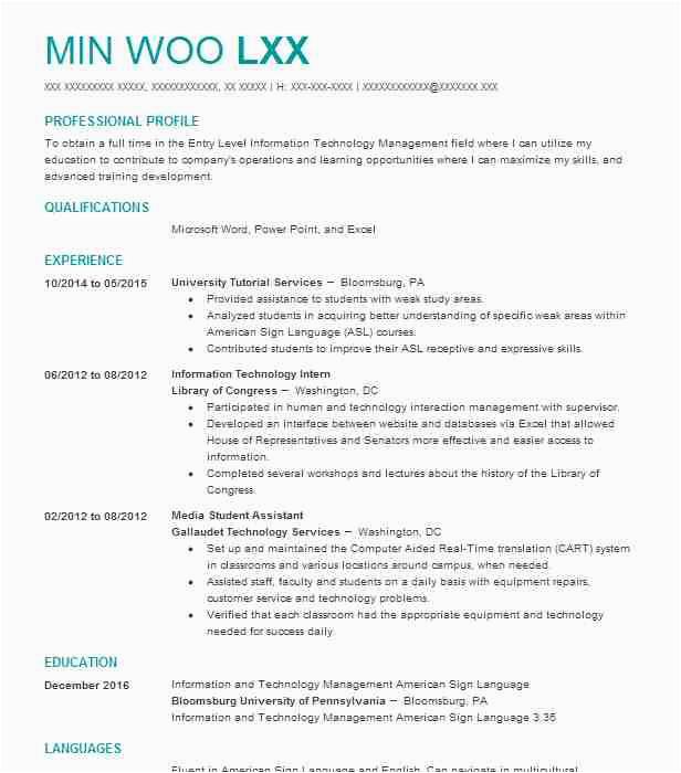 sample resume for internship in information technology