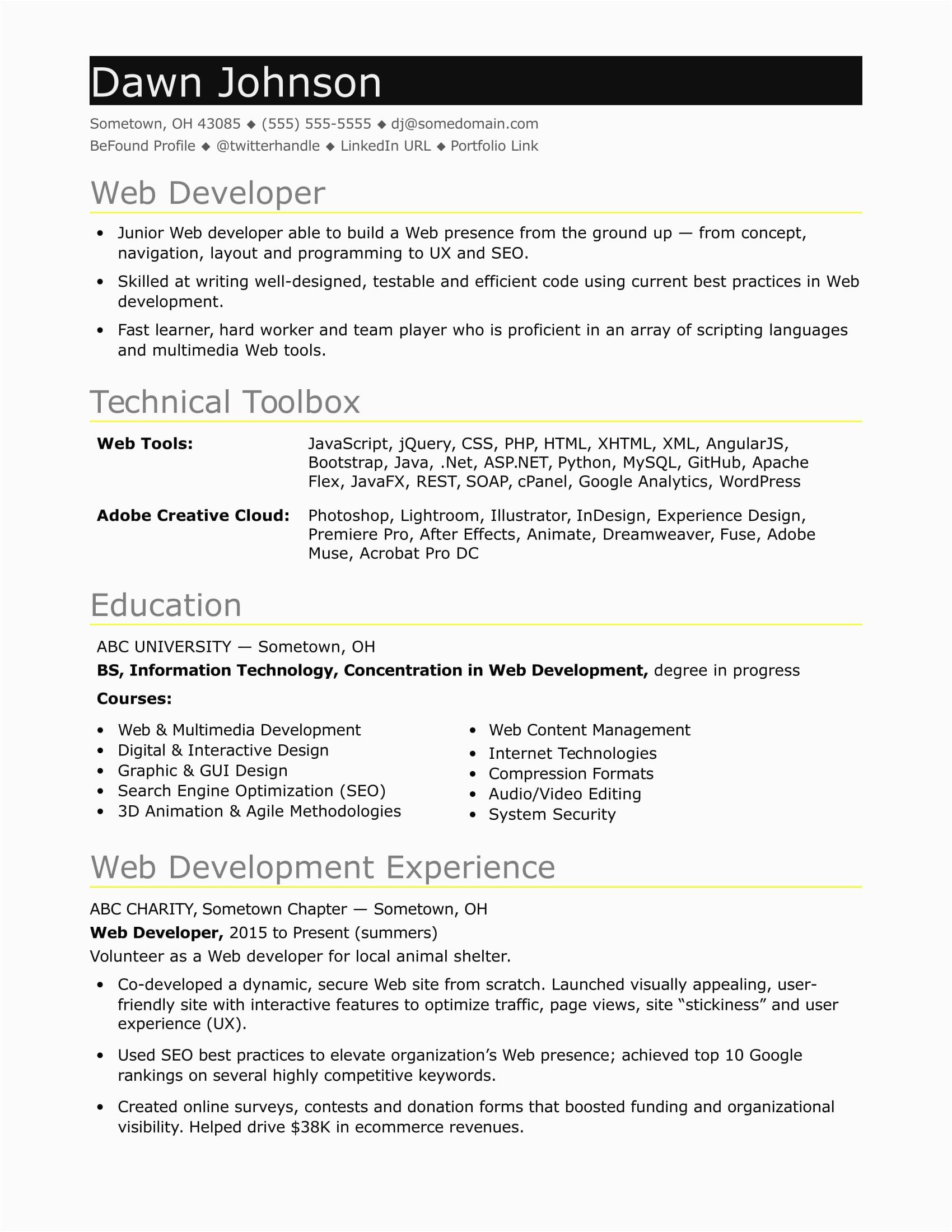 sample resume it developer entry level